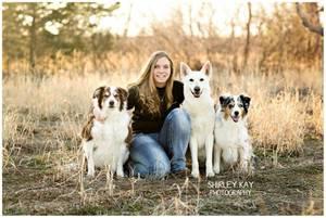 Buddy's Dog School, Inc.